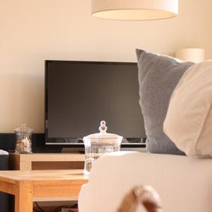 Télévision écran plat avec surround
